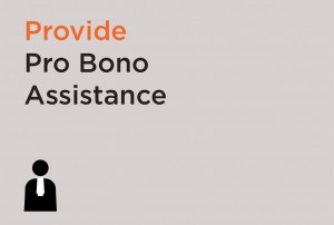 Provide Pro Bono Assistance